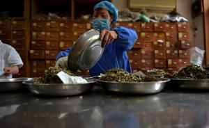 十企业12批次中药饮片不合格,涉鹅不食草、胖大海、黄芪