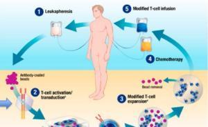 诺华肿瘤免疫疗法售价或超60万美元,专家:标准化难题待解