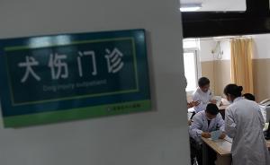 每年七八月份为动物致伤高发期,杭州疾控:月均就诊超万例