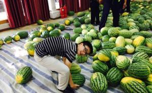 郑州一高校向贫困生购西瓜免费发放:延续近20年的传统