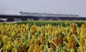 内蒙古首条高铁开通运营,初期将安排开行5对动车组列车