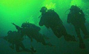 日本蛙人侦察吉布提港中国军舰?国防部:我海军进行有效处置