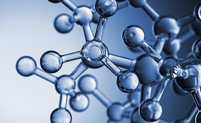 研究绘制出副粘病毒3D原子结构,或助力抗病毒药物开发