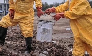 河北一企业年处理万吨化学危废冒充燃料油,转售给近千家用户