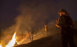史上最大一场山火来势凶猛,美国洛杉矶宣布进入紧急状态