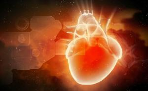 """高温天易发心脏病?保护""""玻璃心""""有八招"""