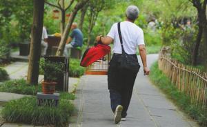 成都禁售画眉八哥鹩哥鸟市萧瑟,预计两年后人工繁育产业成熟