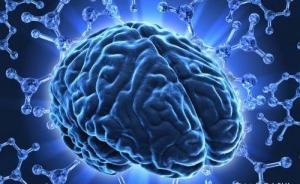 """干细胞培育人脑组织开始""""发芽"""",科学家呼吁伦理管理需跟上"""