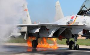 """歼-15撞鸟迫降细节:飞行员后怕""""战友围过来爆炸怎么办"""""""