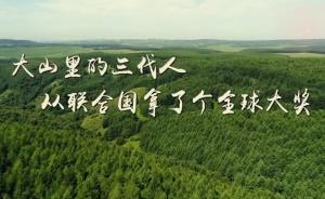 联合国用最高奖向他们致敬:这群中国人的故事震撼了世界