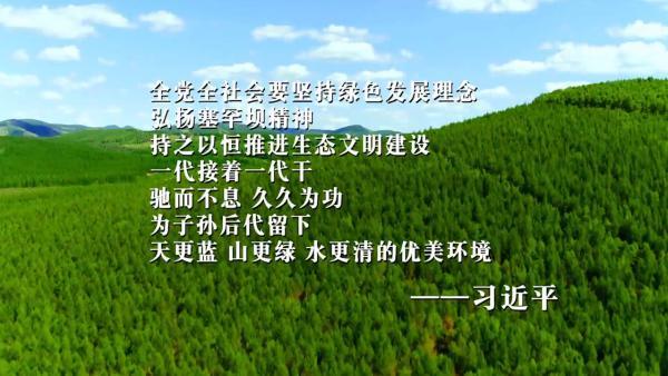 """塞罕坝描绘""""中国绿"""""""