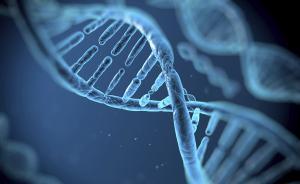 基因编辑技术向遗传病宣战,明年或启动临床试验