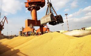 农业农村部:大豆进口供应预计正常,市场价格预期与上月持平